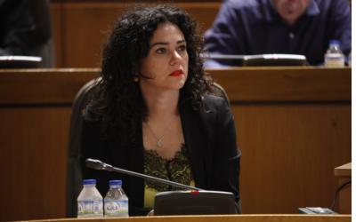 El Parlamento aragonés aprueba por unanimidad una proposición no de ley para el reconocimiento institucional al Pueblo Gitano y su historia